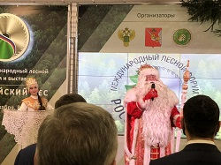Российский лес 2020 2